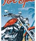 TShirt Biker Festival, Born to Ride 100% coton Bio
